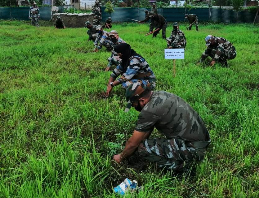 AR carries out tree plantation drive