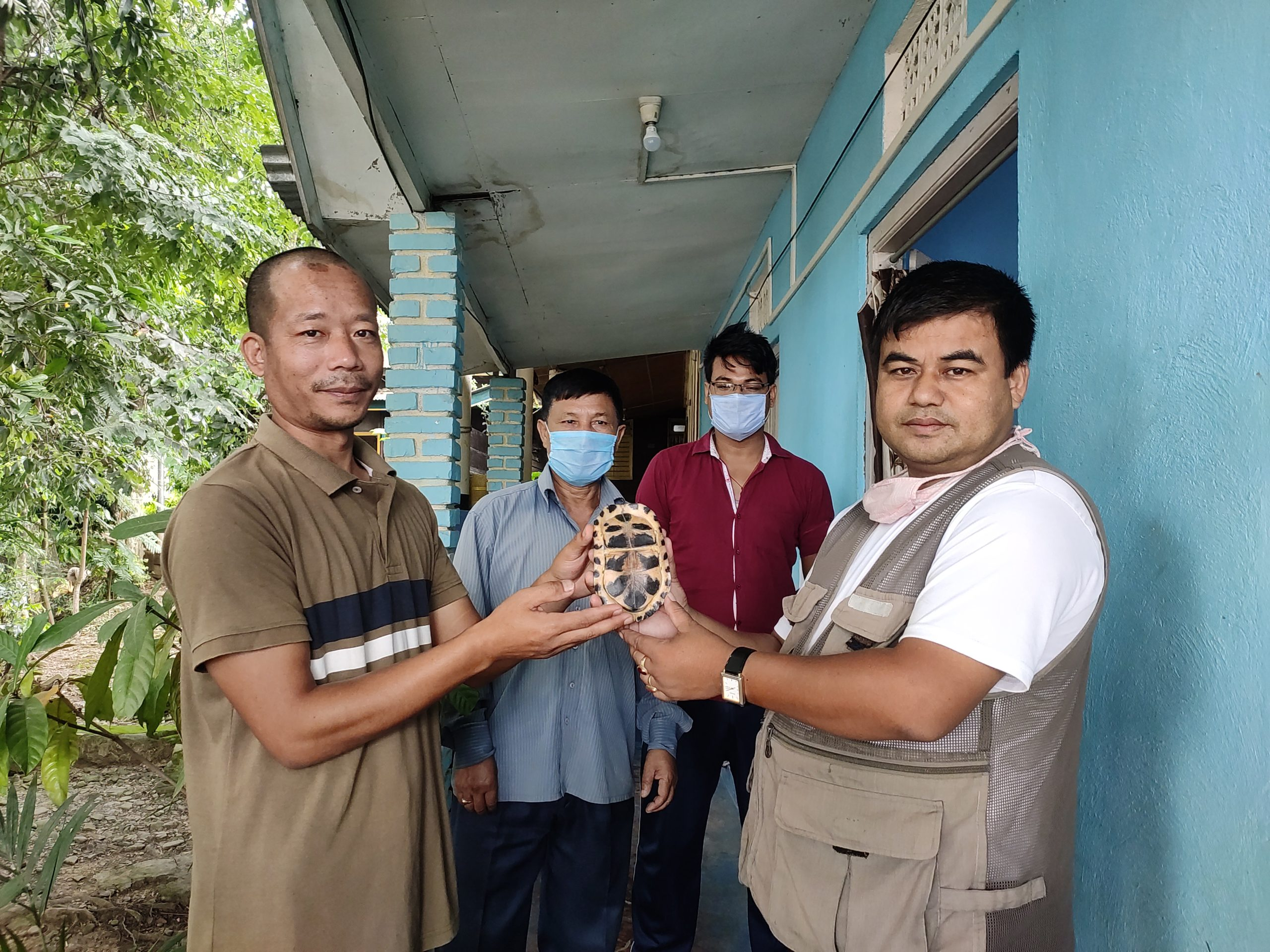 Turtle rescued, handed over to DFO Bishnupur